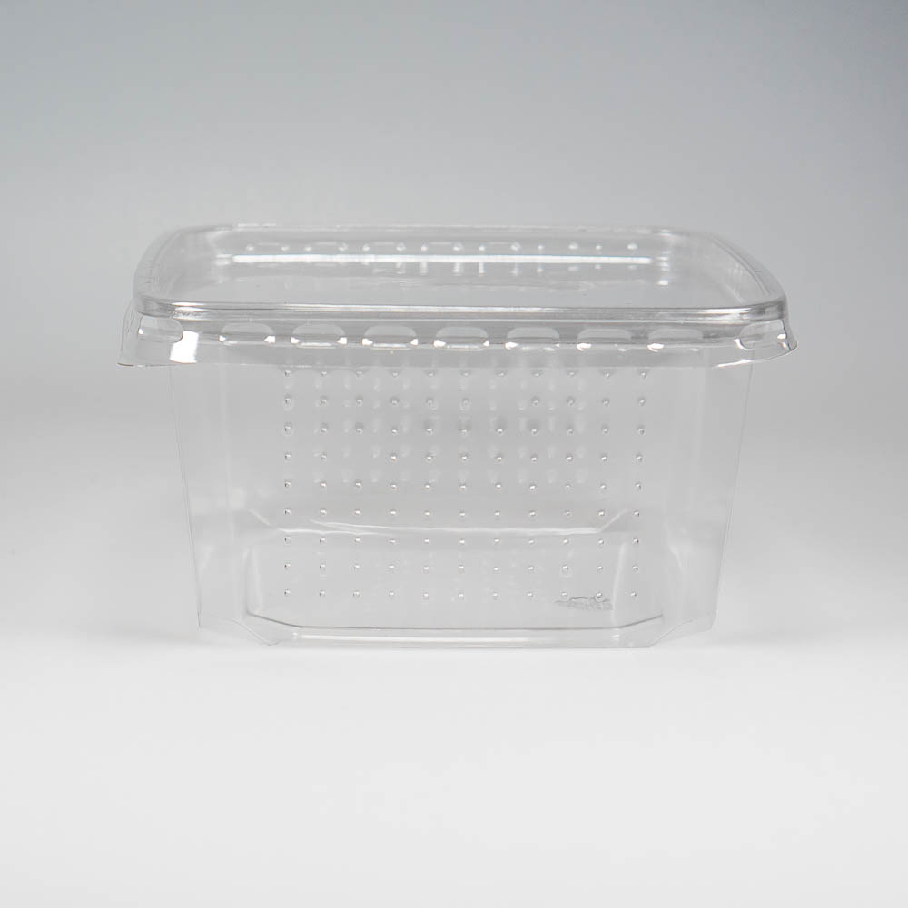 Cricket box perforated